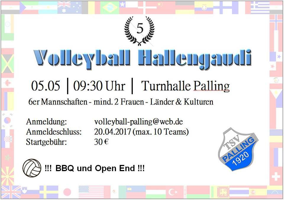 Volleyball Hallengaudi 2018